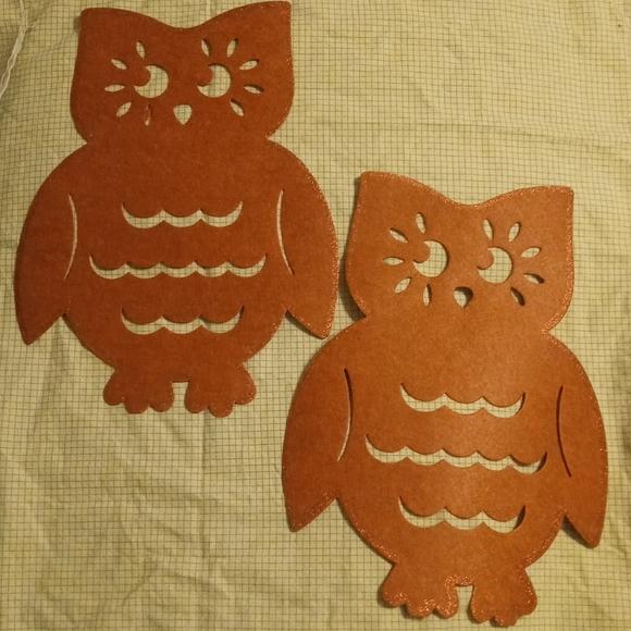 Owl Placemats - Set Of Two